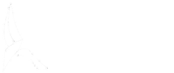 Kingfisher Medical